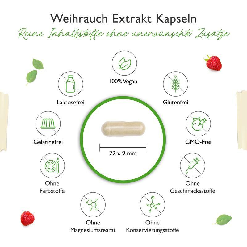 Weihrauch Extrakt 1000 - 1000 mg pro Tag - 85% Boswellia-Säure - 365 Kapseln